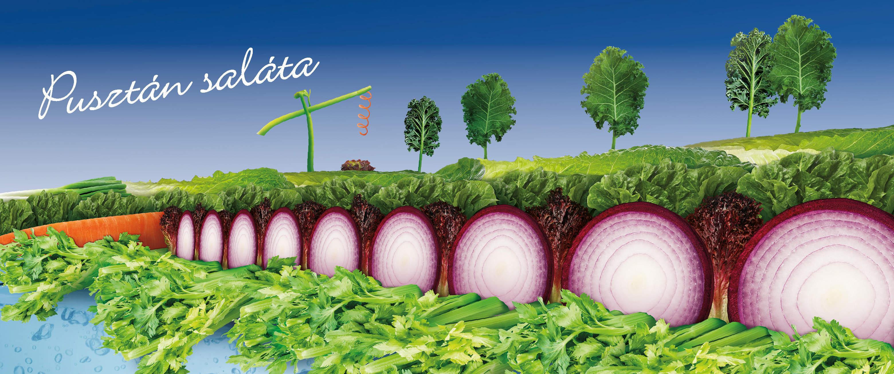 saláták fogyás ricasoli